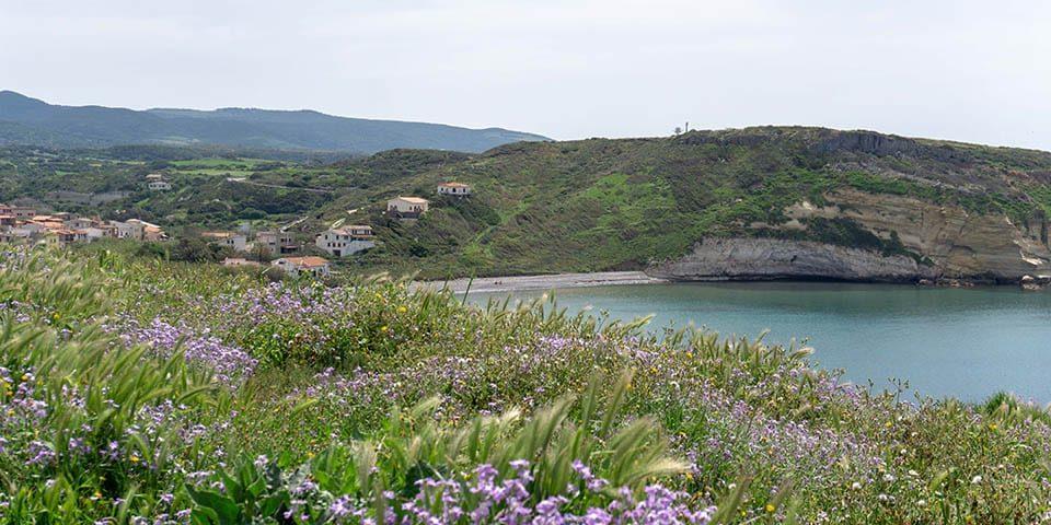 Das Meer an der Westküste Sardiniens in Santa Caterina di Pittinurri, von dem Hügel mit den Blumen