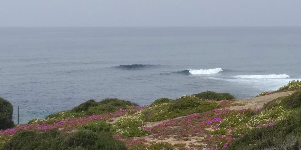 Surfen in Sardinien
